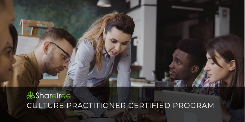 Culture Practitioner Certified Program
